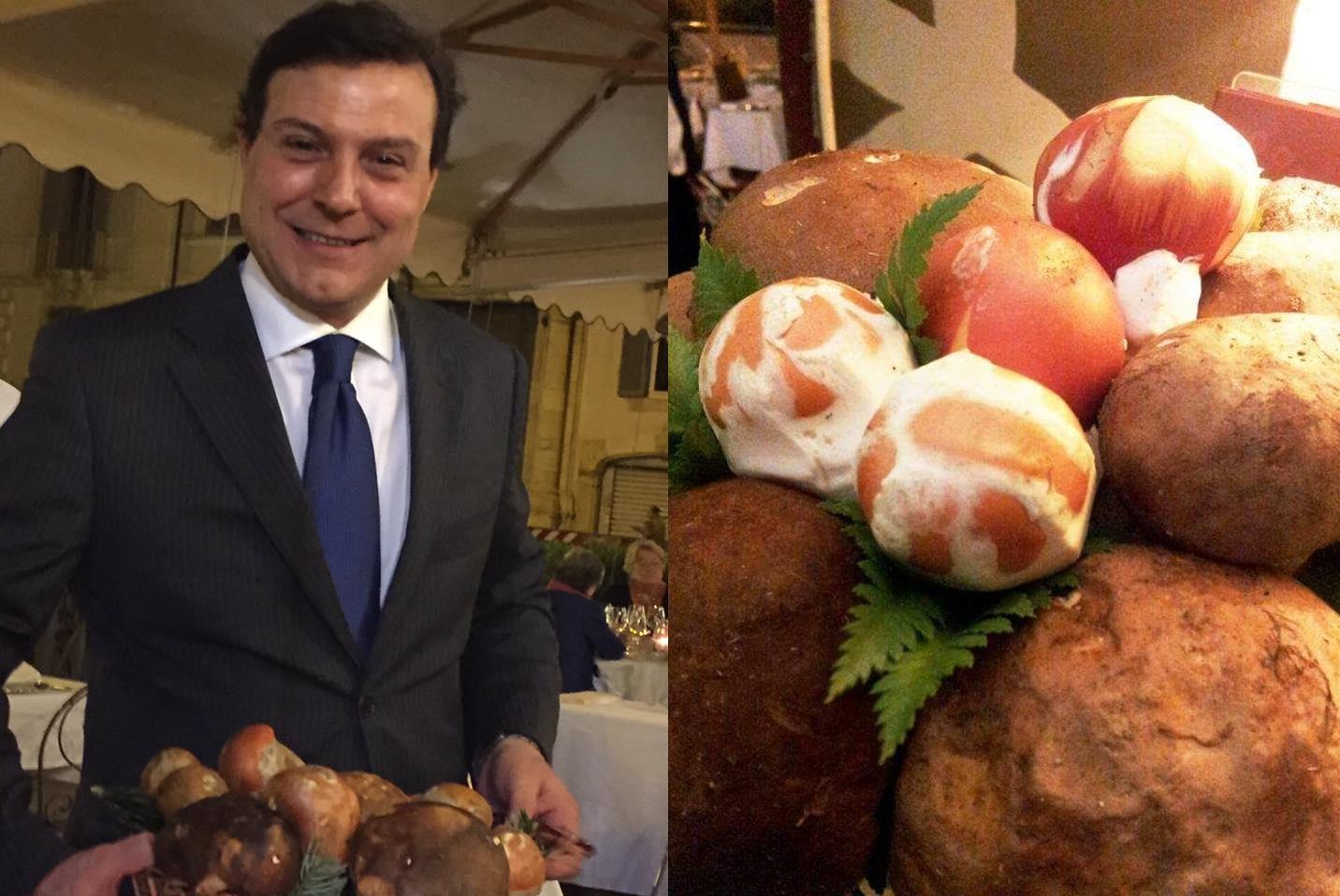 """Gusta l'ovolo, il """"re dei funghi"""""""